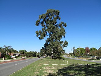 Erindale Road - View south from Hamersley
