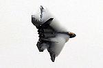 F-22 Raptor (5143893373).jpg