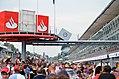 F1 Fans (6148399468).jpg