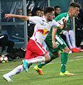 FC Liefering gegen WSG Wattens (19. Mai 2017) 42.jpg