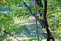Fairy Stone State Park Trees October 2011 (6260716195).jpg