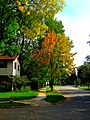 Fall In the Northside of Madison - panoramio.jpg
