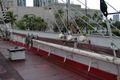 Falls of Clyde railing.jpg