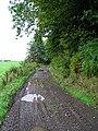 Farm Track - geograph.org.uk - 59810.jpg