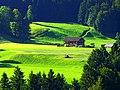 Farmer - panoramio (4).jpg