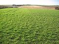 Farmland along the A1079 - geograph.org.uk - 126002.jpg
