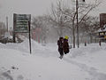 Feb 2013 blizzard 5888.JPG