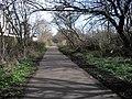 Ferry Road Path - geograph.org.uk - 1209921.jpg