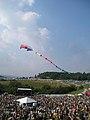 Festival kite All Good Music Festival Legend Valley Thornville OH July 2012.jpg