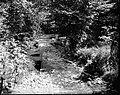 File-C4260-C4271--Unknown location--Flood damage -1917.09.13- (6edc94ea-5db5-4c7c-8d24-5cd93f423a96).jpg