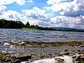 Fischbecker Kiesteich - panoramio.jpg
