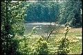 Fishing at Colonial National Historical Park, Virginia (8c59753d-d998-4b19-b565-47170371187d).jpg
