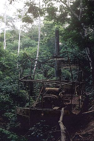 Fitzcarraldo - The remains of the steamer used in the movie, in Madre de Dios Region. Photo: Dr. Eugen Lehle