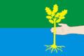 Flag of Fyodorovskoe (Perm krai).png
