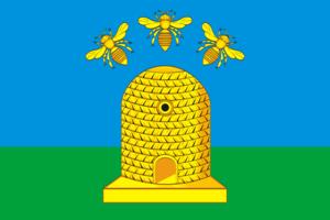 Tambov - Image: Flag of Tambov (Tambov oblast)