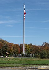 Flagpole Monopole Concealed Cell Tower.jpg