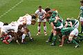 Flanker Rugby.jpg