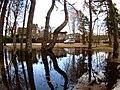 Flood 2010 - Druviems - panoramio (3).jpg