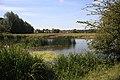Floodgates Pool, Sudbury - geograph.org.uk - 859119.jpg