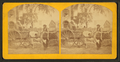 Florida Cracker, from Robert N. Dennis collection of stereoscopic views.png