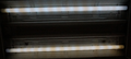 Fluorescent wear - mercury adsorption.png