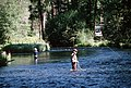Fly fishing Metolius River, Deschutes National Forest (36294211466).jpg