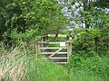 Footbridge at Feckenham Wylde Moors Nature Reserve - geograph.org.uk - 173564.jpg