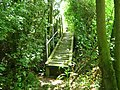 Footbridge near Putten Barn - geograph.org.uk - 1388027.jpg