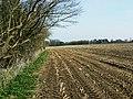Footpath, West Close Copse, Tockenham Wick - geograph.org.uk - 1209088.jpg