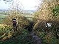 Footpath Near Tutbury - geograph.org.uk - 1612094.jpg