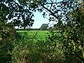 Footpath entrance, Cotmarsh, Broad Town - geograph.org.uk - 1015388.jpg