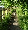 Footpath to the Youth Hostel - panoramio.jpg
