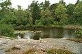 Forest lake Ankermyr - panoramio.jpg