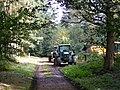 Forestry works, Home Park, Hatfield House - geograph.org.uk - 579929.jpg