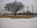 Fort Reno Tower + Tree (4252036263).jpg
