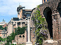Forum wisteria and ruins.jpg