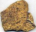 Fossiliferous sandstone (Byer Sandstone Member, Logan Formation, Lower Mississippian; east-central Ohio, USA) 1 (46489339344).jpg