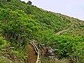 Furnas do Enxofre - Ilha Terceira - Portugal (3629555135).jpg