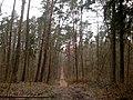 G. Ladushkin, Kaliningradskaya oblast', Russia - panoramio (9).jpg