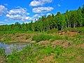G. Nizhnyaya Tura, Sverdlovskaya oblast' Russia - panoramio - Oleg Seliverstov (10).jpg