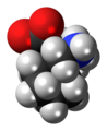 Gabapentin zwitterion spacefill.png