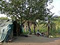 Ganeshpuri Akloli 2013 - panoramio (39).jpg