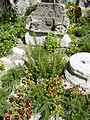 Garden in Diocletian's Palace - Split - Croatia 02.jpg