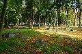 Gdańsk. Stary cmentarz w Brętowie, część południowa - panoramio.jpg