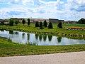 Geese - panoramio (5).jpg