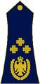 General-pukovnik Republika Srpska 1992.png