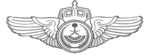 General Security Aviation Command Pilot Wing Badge.png