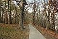 Gfp-iowa-pikes-peak-state-park-pathway.jpg