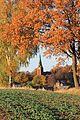 Goldener Herbst in Sachsen. 02.jpg