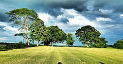 Golf course, Doomdooma, Assam.jpg